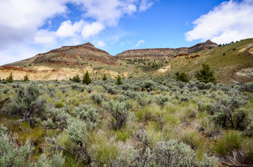 The Landscape of John Day Fossil Beds National Monument