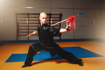 Garden Poster Martial arts Wushu master training with spear, martial arts
