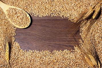 Pannello con grano e spighe