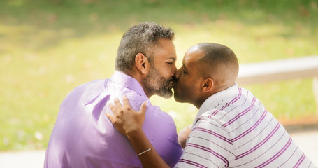 Kiss And Love Between Gay Couple In Park