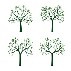 Set Trees with Leaves and Roots. Vector Illustration.