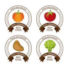 colorful logos set of fresh and healthy organic food with pumpkin apple potato and broccoli vector illustration