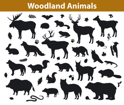 Woodland forest animals silhouettes collection including deer, bear, owl, wild boar, lynx, squirrel, woodpecker, badger, beaver, skunk, hedgehog