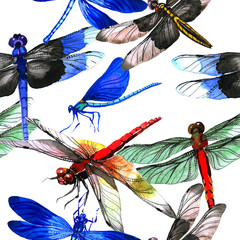 Insect dragonfly pattern in a watercolor style isolated.