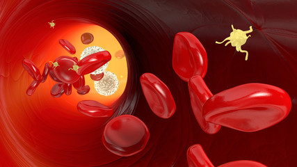 Red blood cells, white blood cells and platelets in blood vessel, illustration