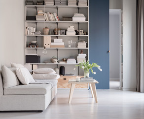 living room with bookshelf, plywood and blue and grey
