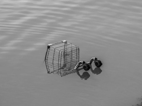 Shopping cart in a river