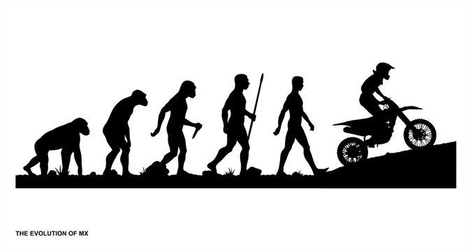 The Evolution of MX