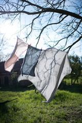 frische Wäsche trocknet im Garten an der Wäscheleine im Sonnenlicht