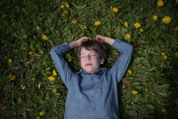 Junge liegt auf der Wiese und ruht sich in der Sonne aus zwischen Blumen