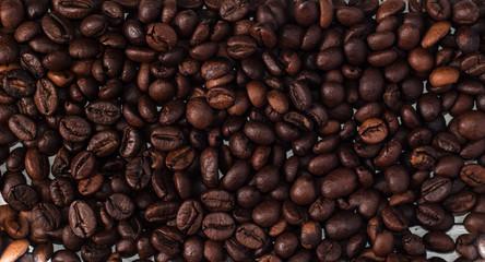 coffee bean in full screen,