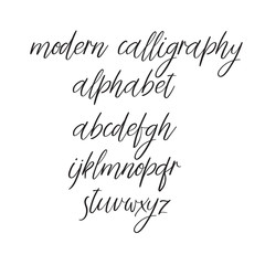Vector Calligraphy Alphabet. Handwritten font isolated on white background.