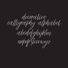 Exclusive Custom Alphabet. Handwritten font. Modern calligraphy. Vector ABC.