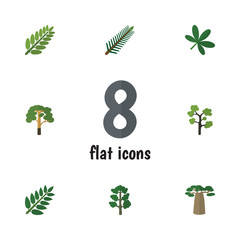 Flat Icon Ecology Set Of Wood, Acacia Leaf, Maple And Other Vector Objects. Also Includes Park, Rosemary, Oaken Elements.