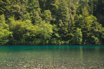 Wall Mural - Turquoise river in a forest.