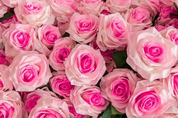 Rose - Flower, Bouquet, Flower, Orchid, Wallpaper