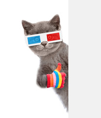 Cat in the 3d glasses showing thumbs up behind white banner. isolated on white background