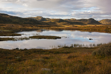 Calm lake on brown tundra background in mountain Hardangervidda Plateau, national park Norway