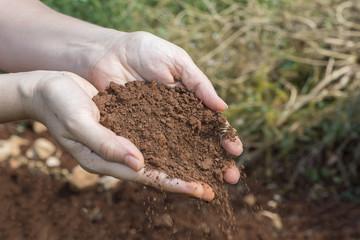 women's Hands With Soil