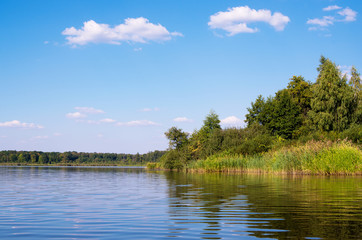 Wall Mural - Beautiful summer landscape on the lake, the green grass and blue sky.