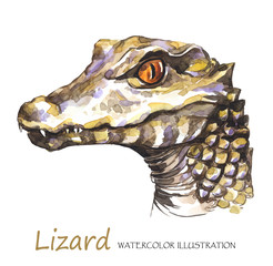 Watercolor Lizard on the white background. Exotic animal.