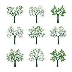 Set of Trees with Leaves. Vector Illustration.