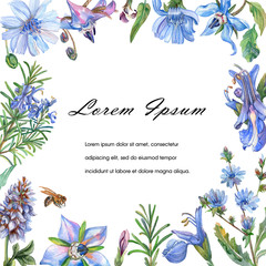 Greeting or invitation card with blue flowers. Watercolor illustration.