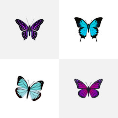 Realistic Papilio Ulysses, Lexias, Polyommatus Icarus And Other Vector Elements. Set Of Moth Realistic Symbols Also Includes Butterfly, Bluewing, Sky Objects.