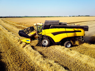 Aerial shot of yellow harvester working on wheat field. Bird's eye perspective.