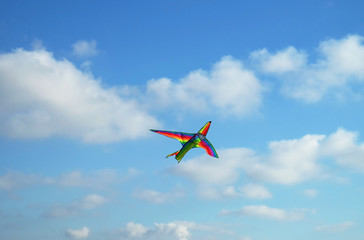 Kite in the shape of an airplane