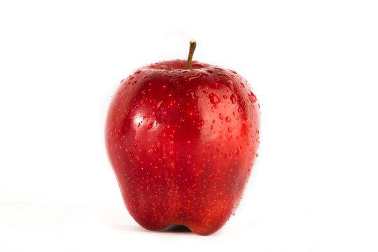Fresh wet red apple