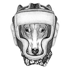 DOG for t-shirt design Wild boxer Boxing animal Sport fitness illutration Wild animal wearing boxer helmet Boxing protection Image for t-shirt, poster, banner
