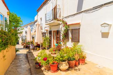 Wall Mural - Flower pots in narrow street with traditional houses in Sant Joan de Labritja village, Ibiza island, Spain