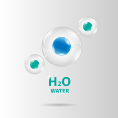 water molecule model vector