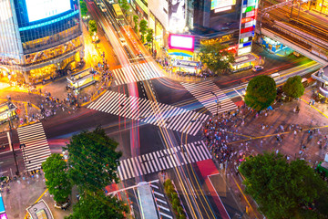 Wall Mural - Shibuya Crossing from top view in Tokyo