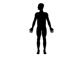 Man silhouette vector. Black silhouette man on a white background