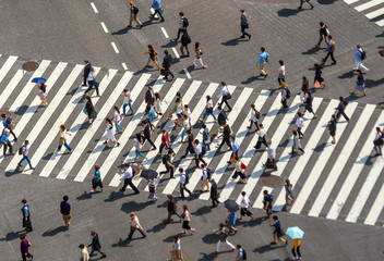 Fotomurales - Shibuya Crossing from top view