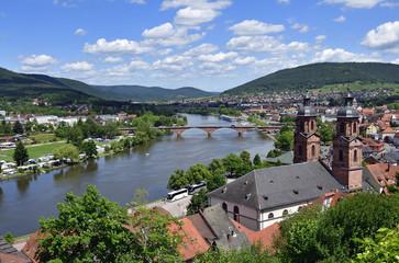 Blick von der Mildenburg auf das Maintal bei Miltenberg