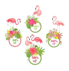 Offer for summer sale with beautiful floral labels and flamingo