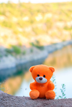 Pink teddy bear over the cliff in the setting sun.
