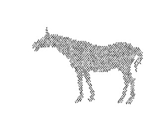 Black silhouette of a horse. White background.