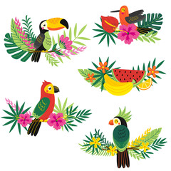 set of isolated decorative tropical design - vector illustration, eps