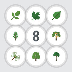 Flat Icon Nature Set Of Wood, Evergreen, Oaken And Other Vector Objects. Also Includes Park, Spruce, Maple Elements.
