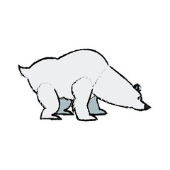 cartoon cute polar bear wild artic
