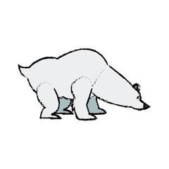 cartoon cute polar bear wild artic