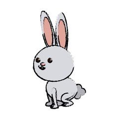 cute rabbit cartoon sweet animal funny