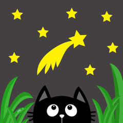 Black cat looking up to comet with stars in the dark night. Green grass dew drop. Cute cartoon character. Kawaii romantic animal. Greeting card. Flat Gray background. Isolated.