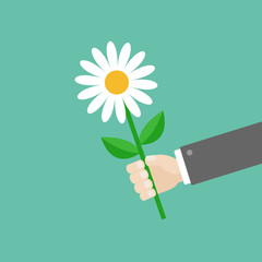 Businessman hand holding white daisy flower. Giving gift concept. Cute cartoon character. Black suit. Greeting card. Flat design. Green background. Isolated.