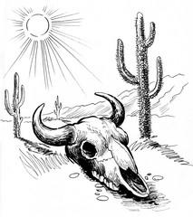 Bison skull in the desert