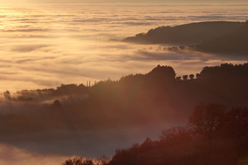A sea of fog at sunset, with hills resembling cliffs and trees projecting long shadows